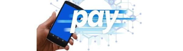ペイジーキャンペーン|ペイジーとは(Pay-easy)